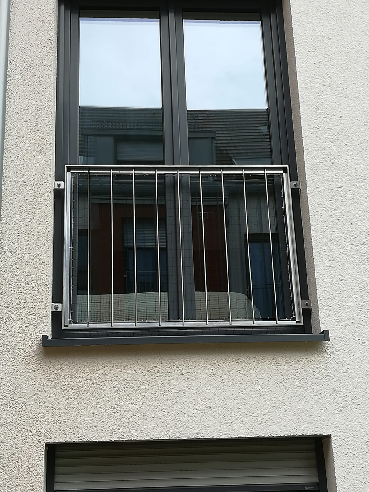 Katzenschutznetze am Fenster