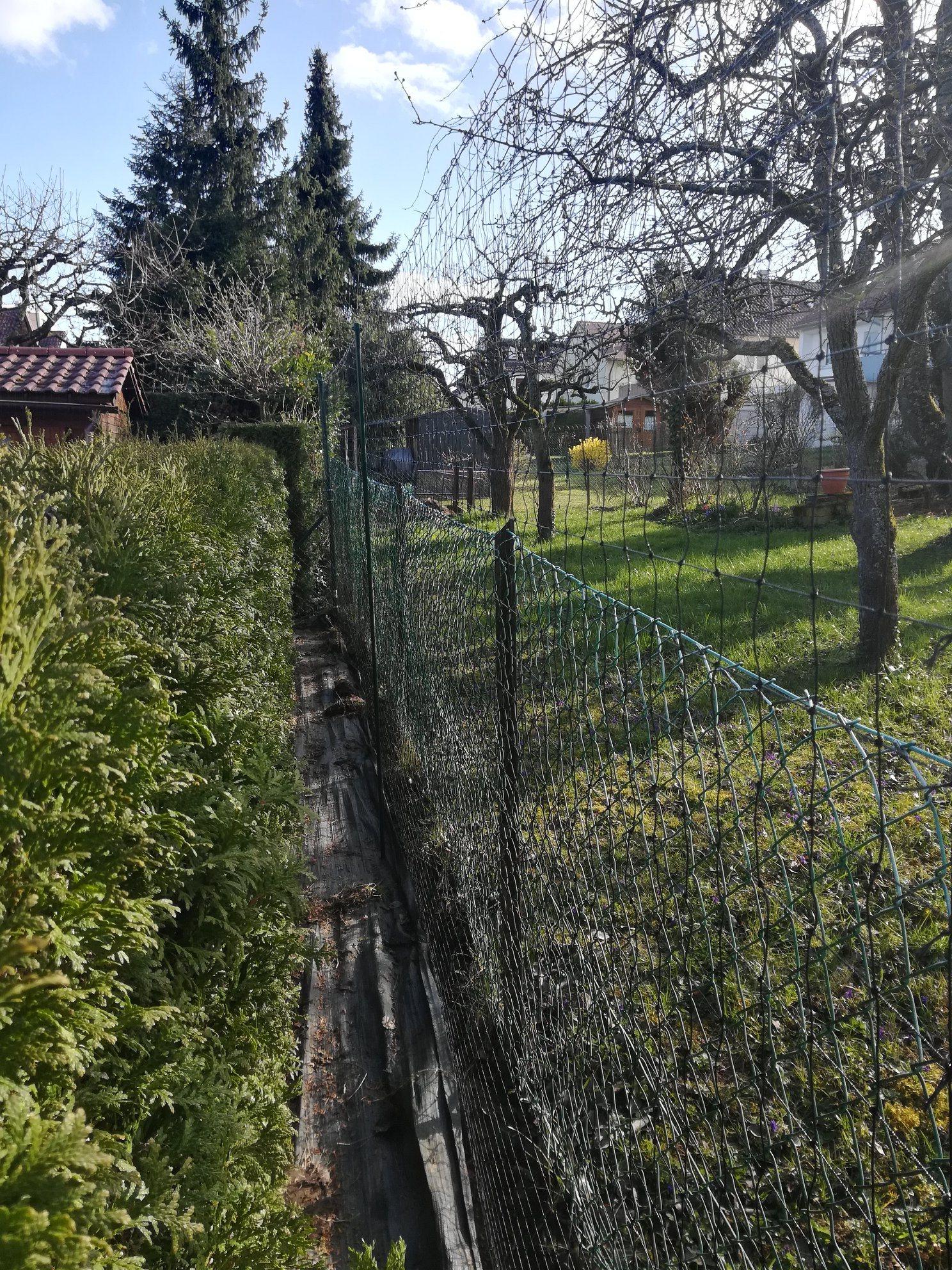 Katzenschutznetze im Garten